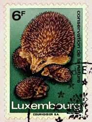 Briefmarken und mehr Bild 2
